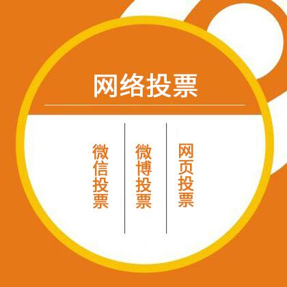 安庆微信投票/微博投票/网页投票/人工投票 27元/100条