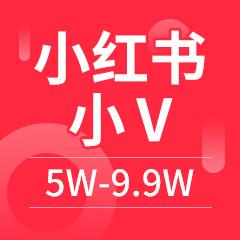 小红书小V 粉丝5W-9.9W