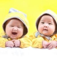 親格-雙胞胎兄弟